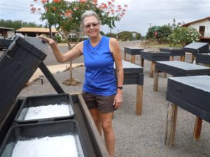 Salt master Nancy Gove turns sea water to salt in her Kaunakakai yard. Photo by Catherine Cluett