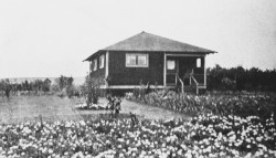 historic Kalama`ula