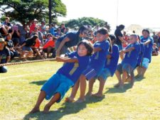 Pulling for Makahiki