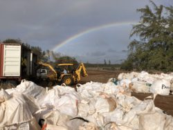 46,000 Pounds of Debris Removed from Beaches