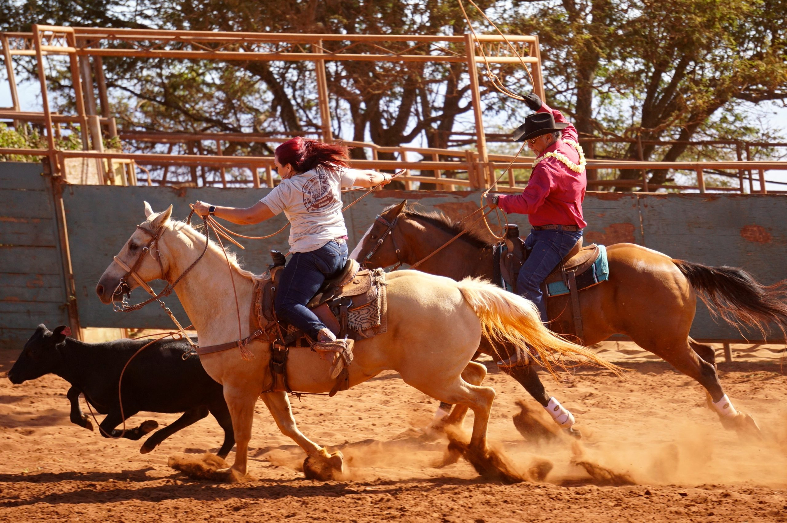 Rodeo Celebrates Paniolo Heritage