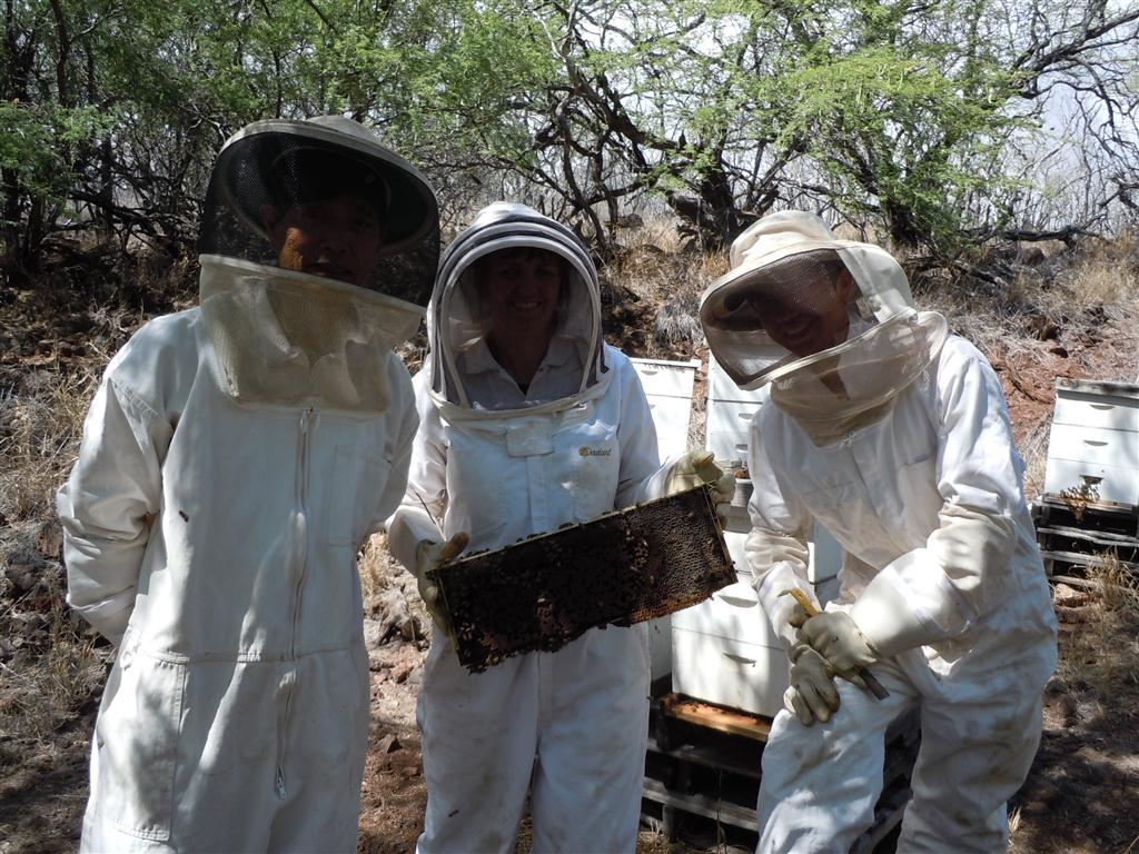Left to right, Denny, Brenda and Elijah Kaneshiro and their bees. Photo by Catherine Cluett