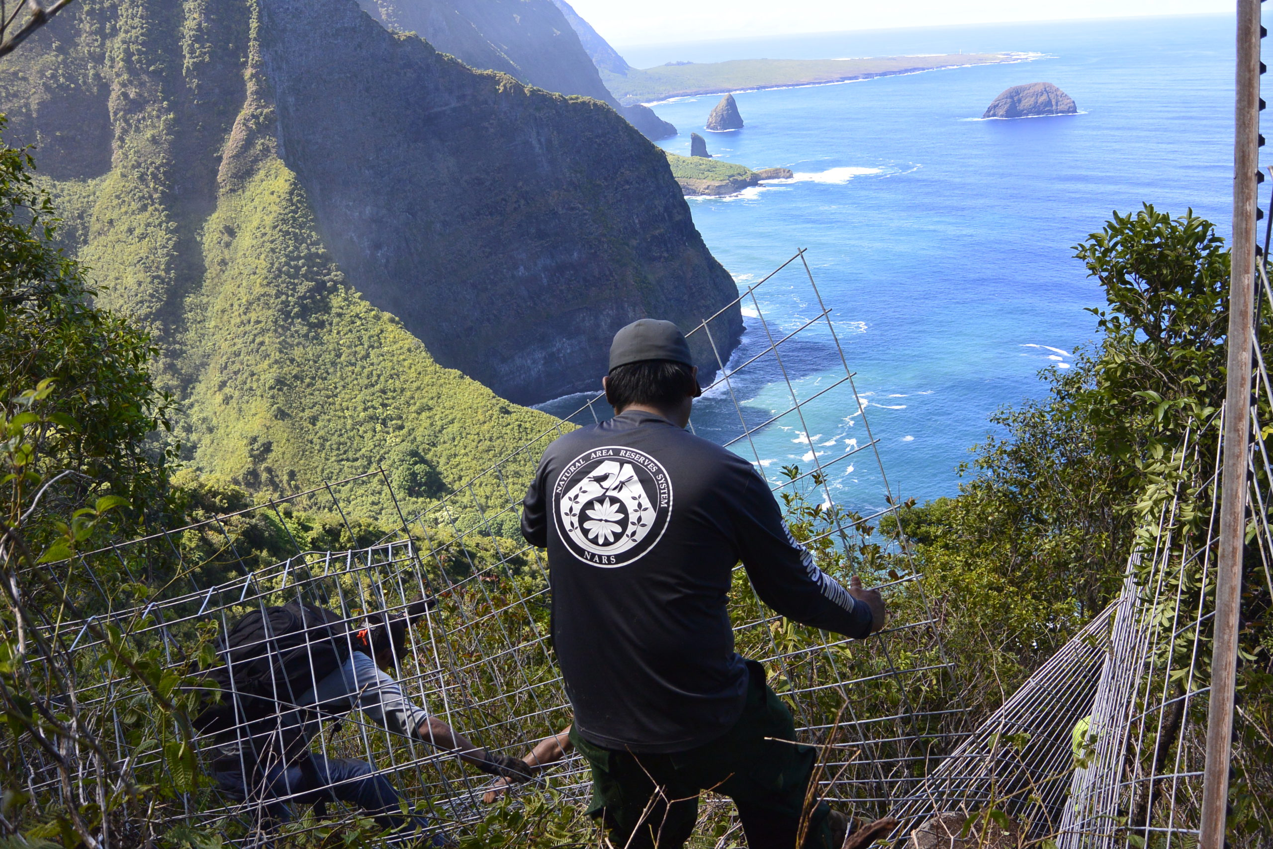 $1.8M for Molokai Conservation Efforts