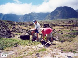 "In 2001 the vegetation near the ""Mormon steps"" eat of Hoolehua beach on the Kalaupapa Penninsula showed a lot of non-native grasses. Photo by Patti Welton"