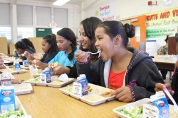 Making School Meals Healthier, Cheaper