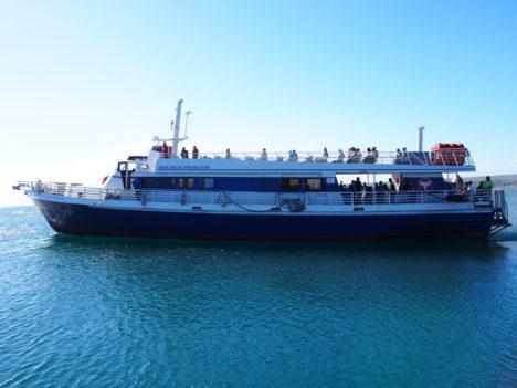Molokai Ferry Ends Service