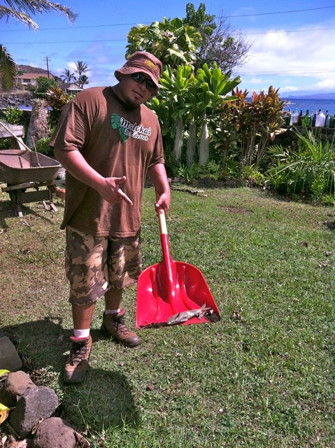 For the Tanaka family living at Honouliwai Bay on Molokai's east end, Saturday night's tsunami came bearing unusual gifts. Along with piles of unwanted debris, it also brought the catch of the day. Photo by Wailani Tanaka.