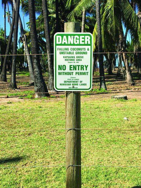 Protect Kapuaiwa Grove